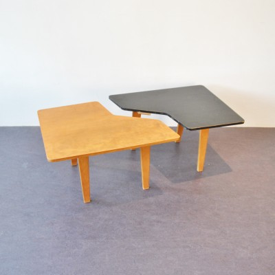 TB 14 coffee table by Cees Braakman for Pastoe, 1950s