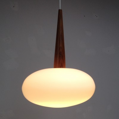 Type NG 74 Hanging Lamp by Louis Kalff for Philips