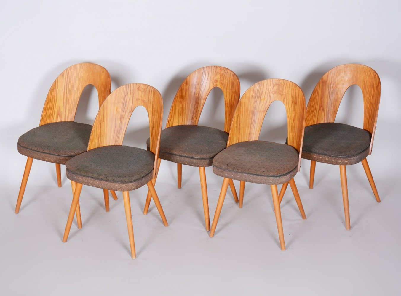 Set of 5 Czech Brown Ash Mid-century Chairs by Architect Antonín Šuman, 1950s