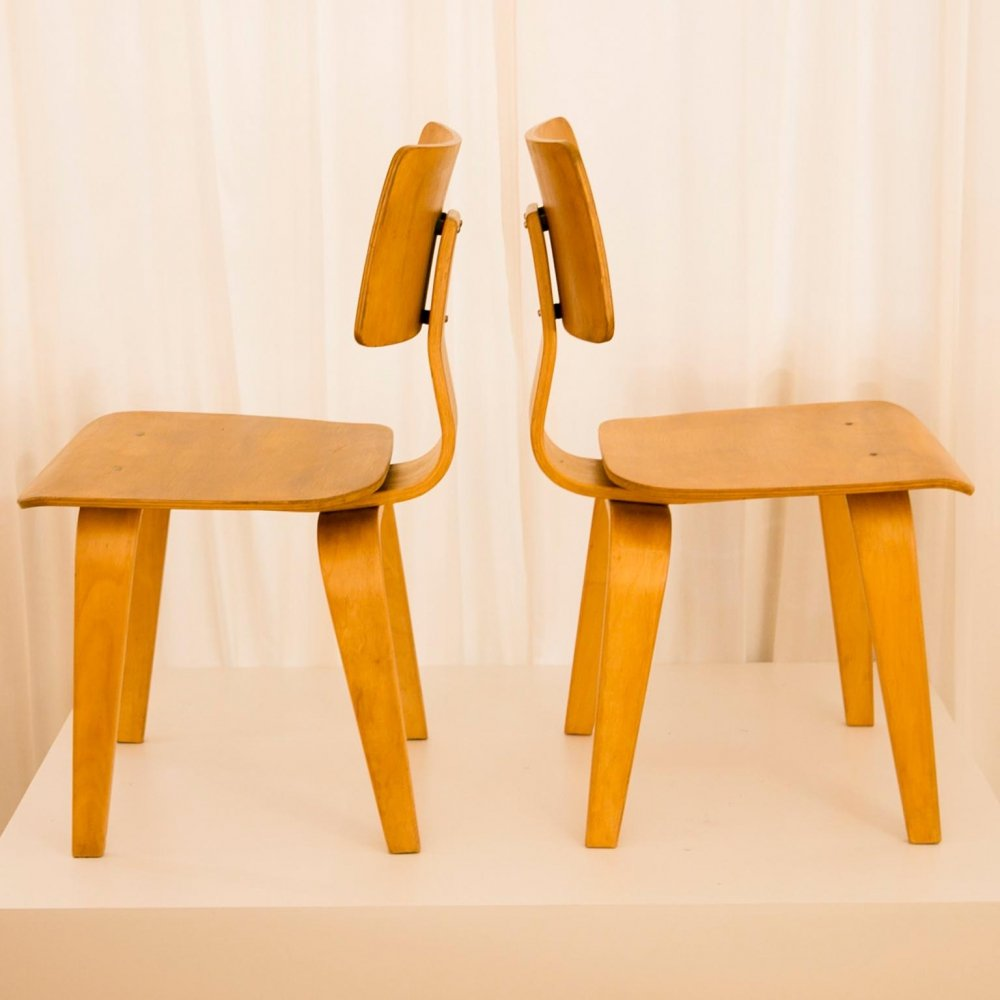 Dining Chair by Cees Braakman for Pastoe, 1960s