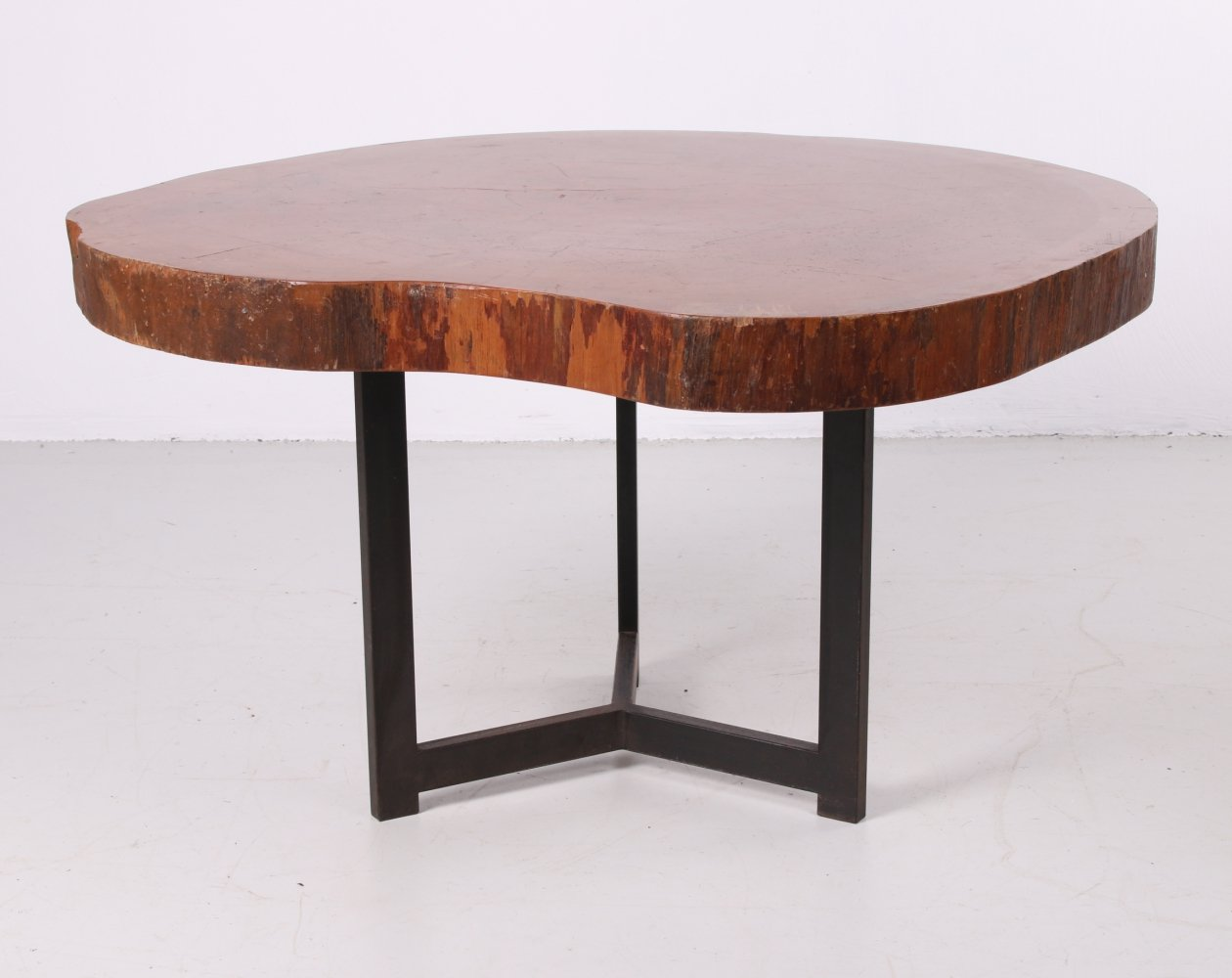 Vintage Tree Trunk Coffee table with metal base, 1960s