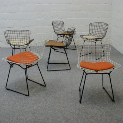 Dinner Chair by Harry Bertoia for Knoll International