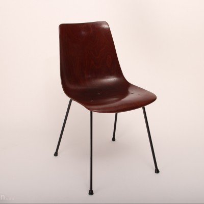 CM131 dining chair by Pierre Paulin for Thonet, 1950s