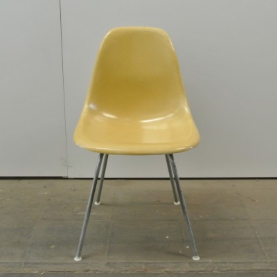 2 DSX Ochre Light dinner chairs from the fifties by Charles & Ray Eames for Herman Miller