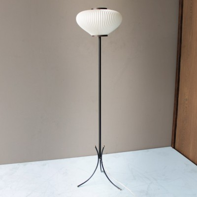 Floor Lamp by Unknown Designer for Rispal