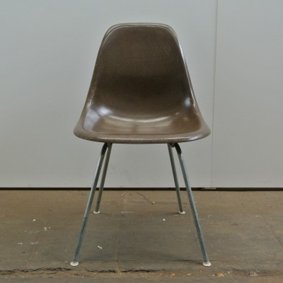 DSX Seal Brown dinner chair from the fifties by Charles & Ray Eames for Herman Miller