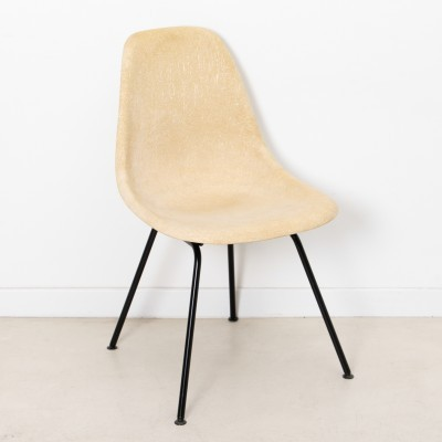DSW dining chair by Charles & Ray Eames for Herman Miller, 1950s