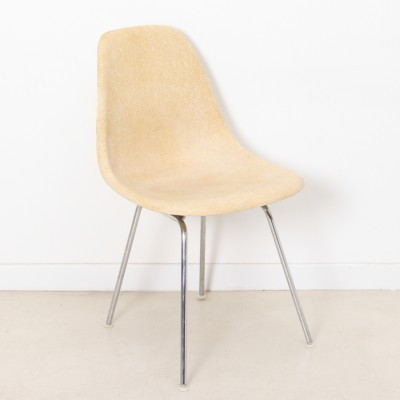 2 x DSW dining chair by Charles & Ray Eames for Herman Miller, 1950s
