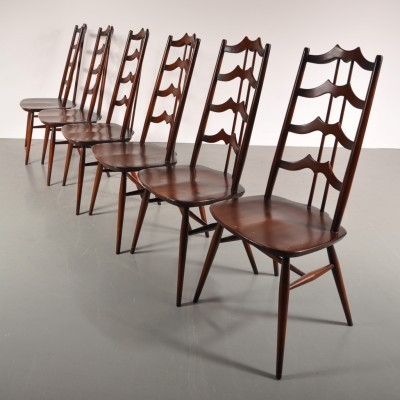Set Of 6 Dinner Chairs By Lucian Randolph Ercolani For Ercol 1960s
