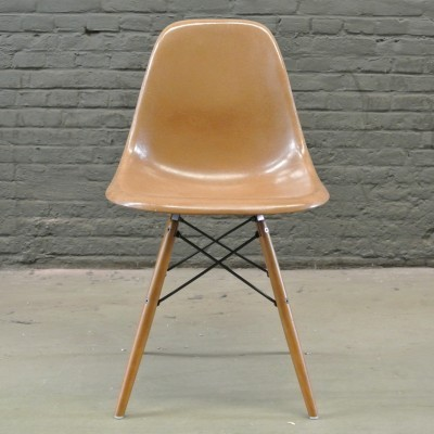 2 DSW Tan dinner chairs from the fifties by Charles & Ray Eames for Herman Miller