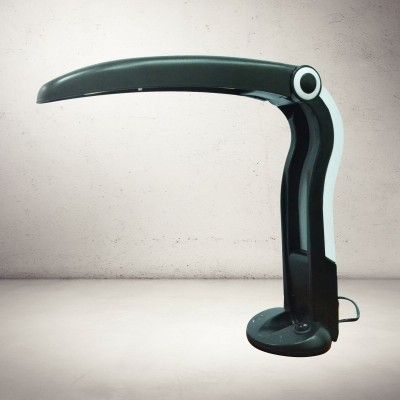 Toucan desk lamp from the eighties by HT Huang for unknown producer