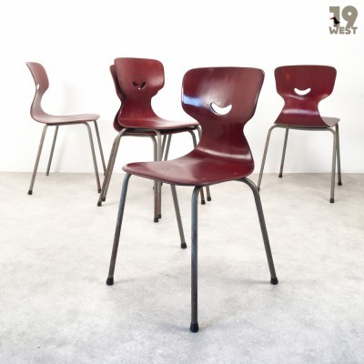Set of 5 dinner chairs from the fifties by unknown designer for Galvanitas
