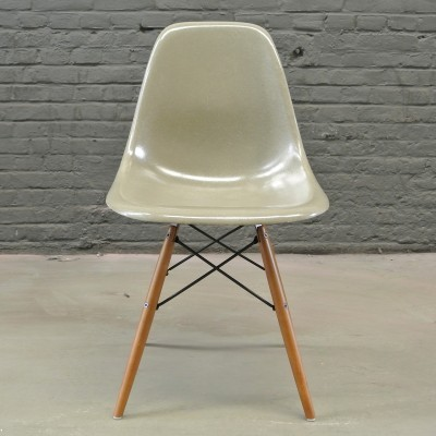 4 x DSW Raw Umber dinner chair by Charles & Ray Eames for Herman Miller, 1950s