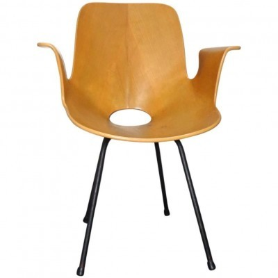 Medea arm chair from the fifties by Vittorio Nobili for Tagliabue
