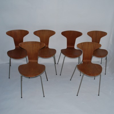Set of 6 3105 Mosquito dinner chairs from the fifties by Arne Jacobsen for Fritz Hansen