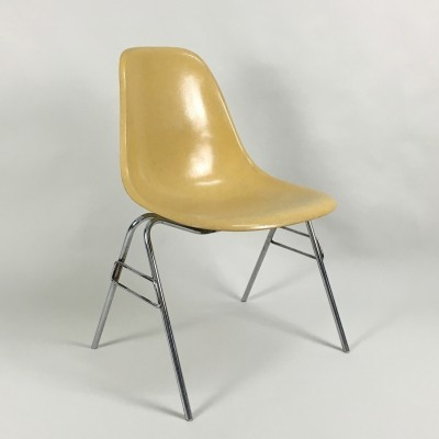 Fiberglass DSS Ochre dinner chair from the fifties by Charles & Ray Eames for Vitra