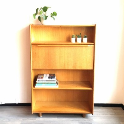 Secretary cabinet from the fifties by Cees Braakman for Pastoe