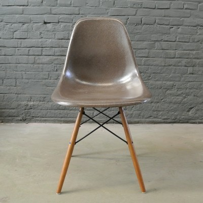 2 DSW Seal Brown dinner chairs from the fifties by Charles & Ray Eames for Herman Miller