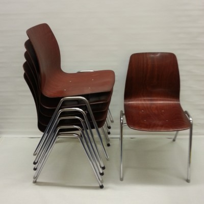 Set of 6 Flötotto dining chairs, 1950s