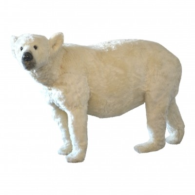 Polarbear by unknown designer for unknown producer