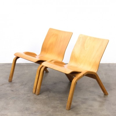 2 Plywood lounge chairs from the sixties by unknown designer for Zwiesel Schott