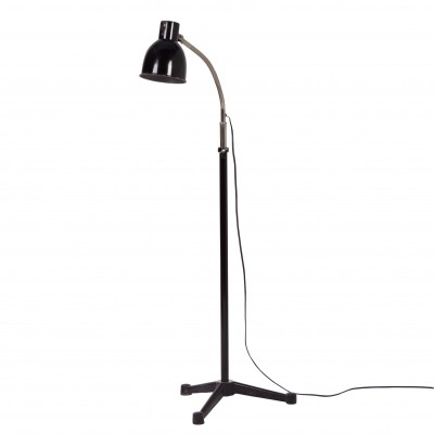 Industrial floor lamp by H. Busquet for Hala Zeist, 1950s