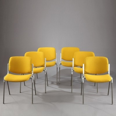 Set of 6 DSC 106 dinner chairs from the seventies by Giancarlo Piretti for Castelli