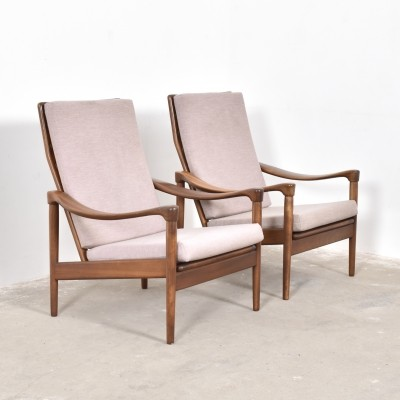 Set of 2 arm chairs from the fifties by unknown designer for De Ster Gelderland