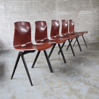 5 dinner chairs from the sixties by unknown designer for Pagholz