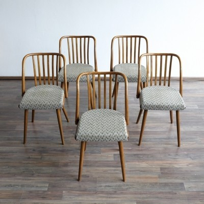 Set of 5 dinner chairs from the sixties by unknown designer for Ton N. P. Bystřice pod Hostýnem