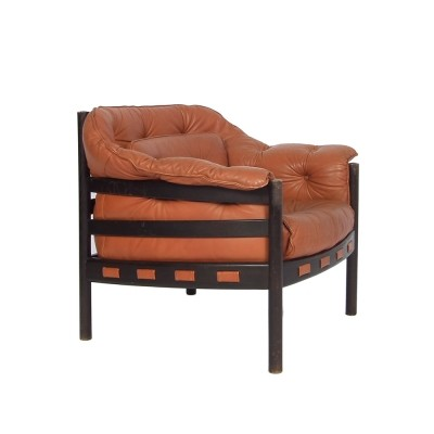 Lounge chair from the sixties by Arne Norell for Coja