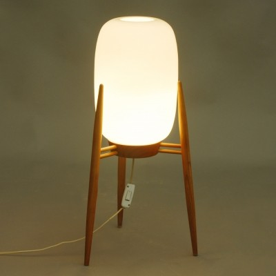 Floor lamp from the fifties by unknown designer for Krasna Jizba DP