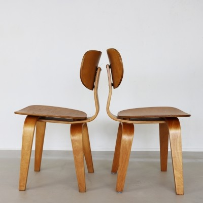 Two 'TB35' Cees Braakman bentwood dinnerchairs, 1960s