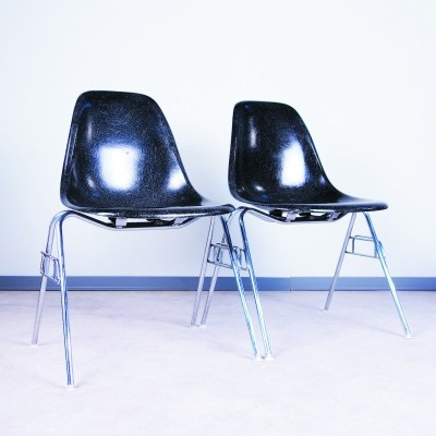 Pair of Plastic Side Chair dinner chairs by Charles & Ray Eames for Vitra, 1960s