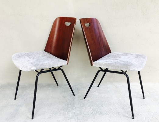 Pair of DU22 dinner chairs by Gastone Rinaldi for Rima Italy, 1950s