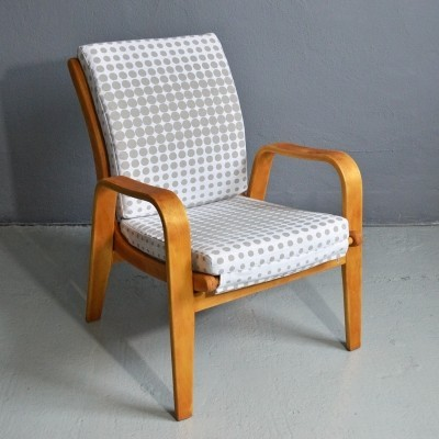 FB06 arm chair by Cees Braakman for Pastoe, 1950s