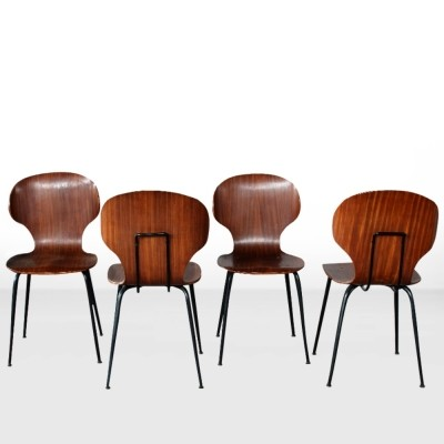 Set of Italian Midcentury wooden chairs by Carlo Ratti