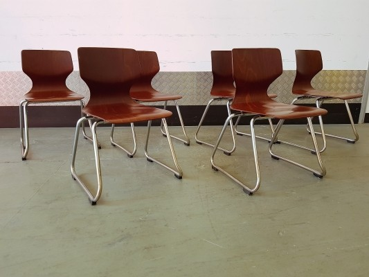 Set of 6 Children Chairs by Elmar Flötotto for Pagholz Flötotto, 1970s
