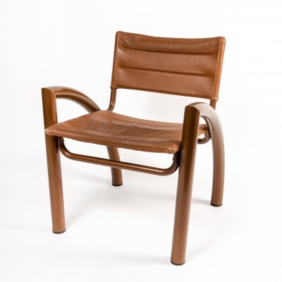 Cassiopea Lounge Chair by Gae Aulenti for Elam