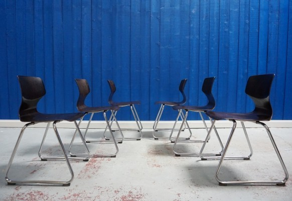 Set of 6 Chairs by Elmar Flötotto for Pagholz Flötotto, 1970s