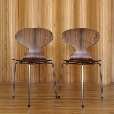 Arne Jacobsen rosewood ant chairs model 3100 by Fritz Hansen