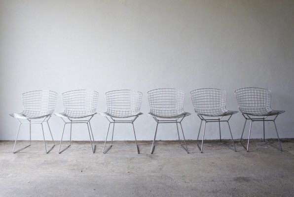6 Dining Chairs By Harry Bertoia