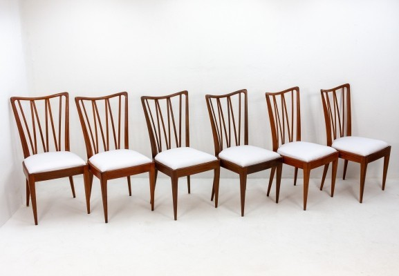 Set of 6 Poly Z dinner chairs by A. Patijn for Zijlstra Joure, 1950s