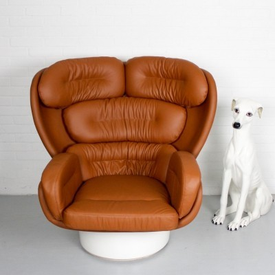 Elda Armchair by Joe Columbo for Comfort, 1960s