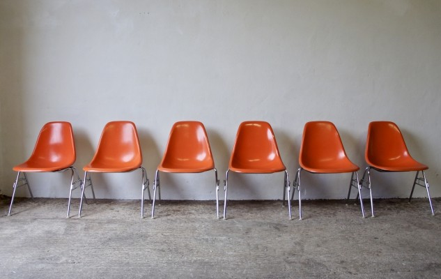 6 Fibreglass DSS Chairs by Eames for Herman Miller, 1976