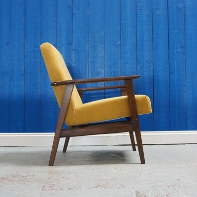 Mid Century Modern Lounge Chair in Yellow, 1960's