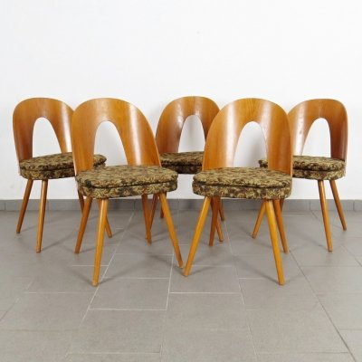 Set of 5 Antonin Šuman dining chairs, 1960s