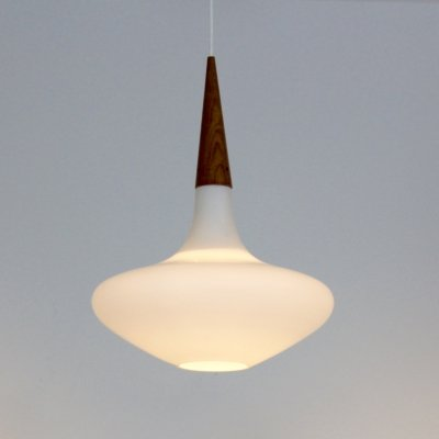 Philips Wood & Opal Glass Pendant Lamp by Louis Kalff, 1950s