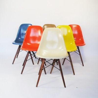 Set of 6 DSW dining chairs by Charles & Ray Eames for Herman Miller, 1950s