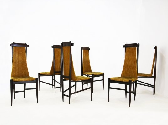 Set of 6 Sergio Rodrigues chairs for Isa Bergamo, 1950s